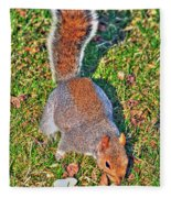08 Grey Squirrel Sciurus Carolinensis Series Fleece Blanket