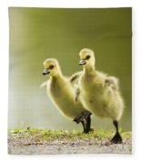 1 2 3 Go Fleece Blanket