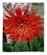A Beautiful Red Flower Growing At Home Fleece Blanket