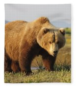 A Brown Grizzly Bear Ursus Arctos Fleece Blanket