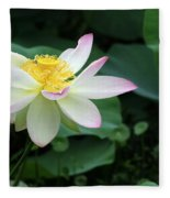 A Pink Tipped White Lotus Fleece Blanket