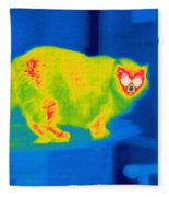 A Thermogram Of A Long Haired Cat Fleece Blanket