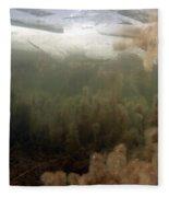 Algae In A Frozen Pond Fleece Blanket