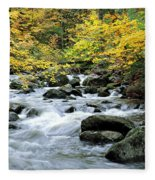 Autumn Stream 3 Fleece Blanket