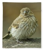 Baby House Finch Fleece Blanket
