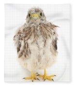 Baby Kestrel Fleece Blanket
