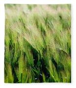 Barley, Co Down Fleece Blanket