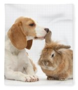 Beagle Pup And Rabbit Fleece Blanket