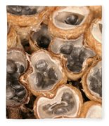 Birds Nest Fungus Fleece Blanket