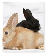 Black And Sandy Rabbits Fleece Blanket