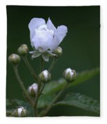 Blackberry Vine Flower Fleece Blanket