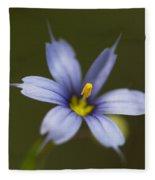 Blue-eyed Grass Wildflower - Sisyrinchium Angustifolium Fleece Blanket