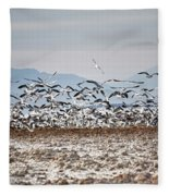 Bombay Beach Birds Fleece Blanket