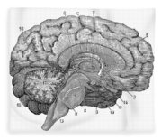 Brain Cross-section Fleece Blanket