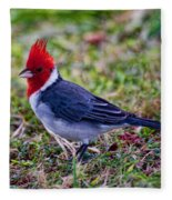 Brazillian Red-capped Cardinal Fleece Blanket