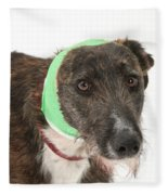 Brindle Lurcher Wearing A Bandage Fleece Blanket