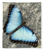 Butterfly, Niagara Botanical Gardens Fleece Blanket