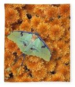 Butterfly On Flowers Fleece Blanket