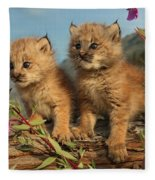 Canadian Lynx Kittens, Alaska Fleece Blanket
