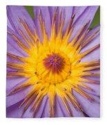 Cape Blue Waterlily Nymphaea Capensis Fleece Blanket