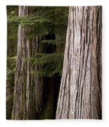 Cedar Trees, Whistler, British Columbia Fleece Blanket