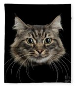 Close Up Of Cats Face Fleece Blanket