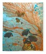 Collare Butterflyfish Fleece Blanket