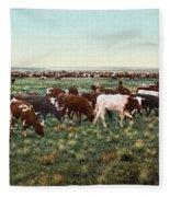 Colorado: Round Up Fleece Blanket