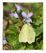Common Brimstone  Fleece Blanket