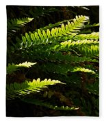 Common Polypody Fleece Blanket