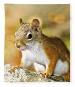 Cute Red Squirrel Closeup Fleece Blanket