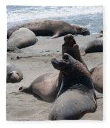 Elephant Seal Colony On Big Sur  Fleece Blanket