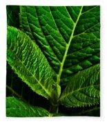 Emerging Hydrangea Leaf Fleece Blanket