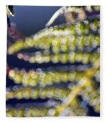 Enchanted Ferns Fleece Blanket