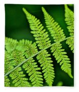 Fern Seed Fleece Blanket