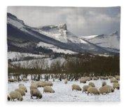 Flock Of Sheep In The Snow Fleece Blanket