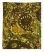 Foraminiferous Limestone Lm Fleece Blanket