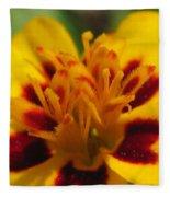 French Marigold Named Starfire Fleece Blanket