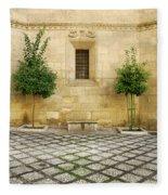Granada Cathedral Doors And Other Details Fleece Blanket