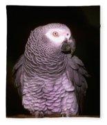 Gray Parrot Fleece Blanket