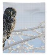 Great Grey Owl, Northern British Fleece Blanket