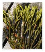 Green Fleece Seaweed Fleece Blanket