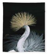 Grey Crowned Crane Balearica Regulorum Fleece Blanket