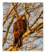 Hawk In A Tree Fleece Blanket