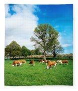 Hereford Bullocks Fleece Blanket