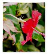 Hibiscus In Bloom Fleece Blanket