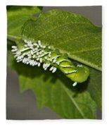 Hornworm With Braconid Wasp Parasites 2 Fleece Blanket