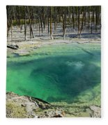 Hot Springs Yellowstone National Park Fleece Blanket