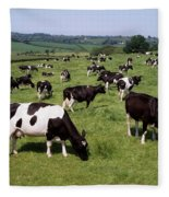 Ireland Friesian Cattle Fleece Blanket