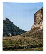 Jailhouse Rock And Courthouse Rock Fleece Blanket